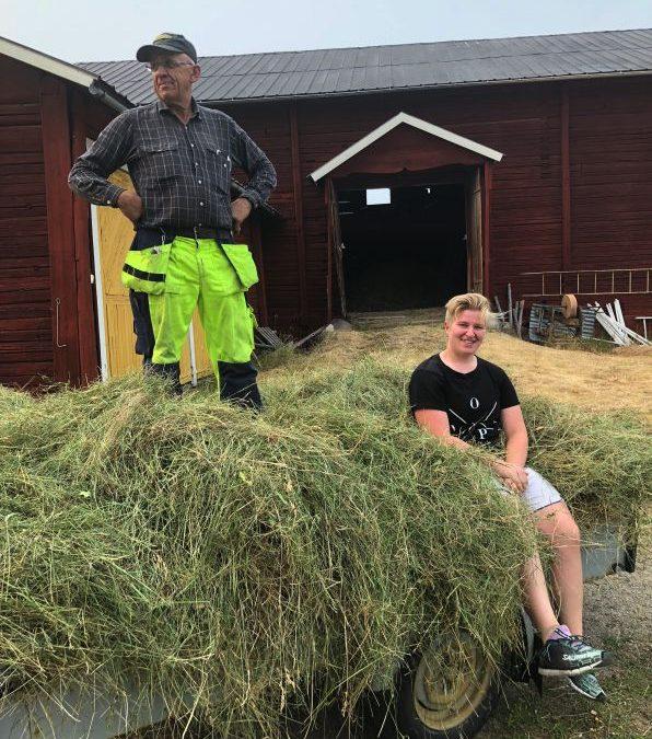Bli bonde för en dag